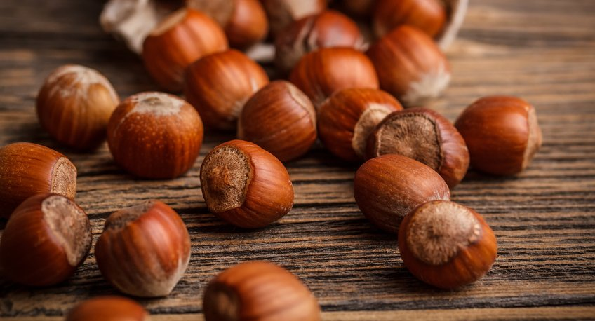 Hazelnuts are filberts.