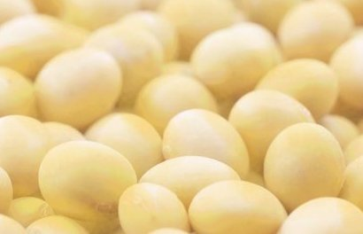 Garbanzo beans.