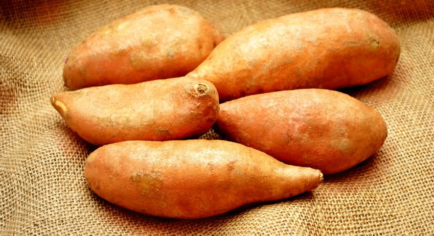 Sweet Potatoes for Beta-carotene & Pantothenic Acid, sweet potato health benefits, vitamin A sweet potatoes, betga-carotene sweet potatoes, Pantothenic Acid sweet potatoes, retinol sweet potatoes, sweet potato superfood super food, sweet potato nutrition, Sweet potatoes and Healthy Aging Healthy Living.